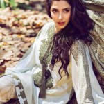 Mahira Khan Divorce What was the Reason?